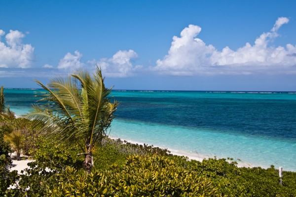 Turtle Cove Providenciales Beach