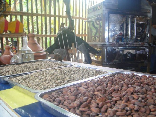 Organic coffee beans and cacao with Raphael's coffee roaster and pizza oven in one