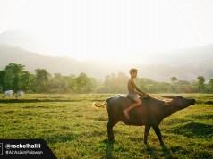 Morning in Palawan by Rachel Halili