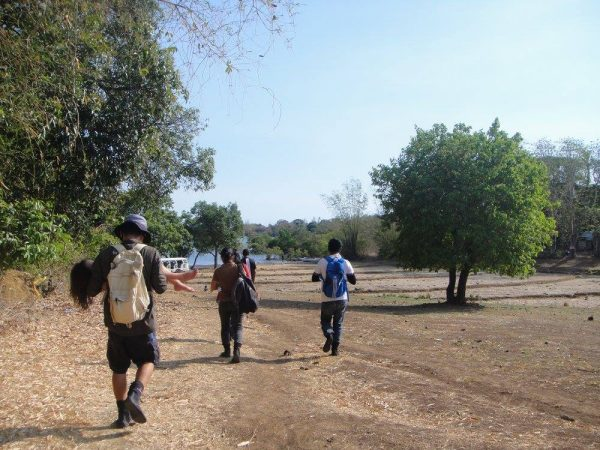 The short walk toward the mangrove planting site