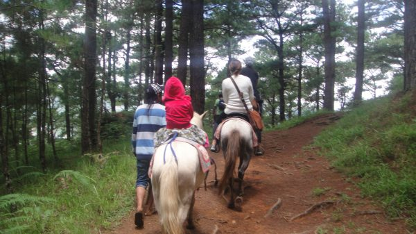 Horseback Riding in Camp John Hay