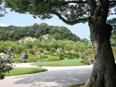 Garden inside Adachi Museum of Art