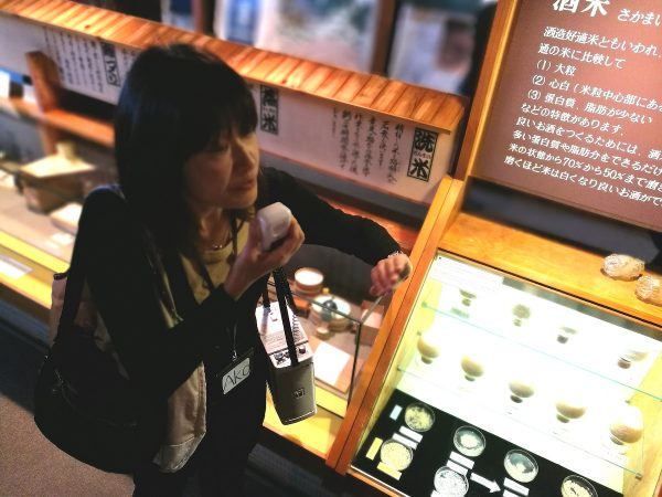Our official tour guide inside Kunizakari Sake no Bunkakan Museum