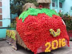 La Trinidad Strawberry Festival 2017