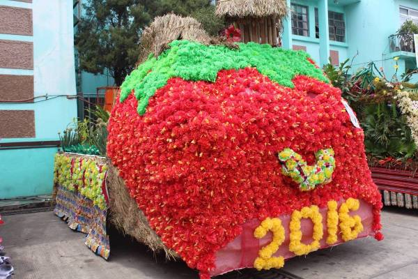 La Trinidad Strawberry Festival 2017