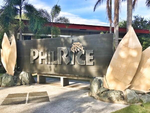 PhilRice Research Institute