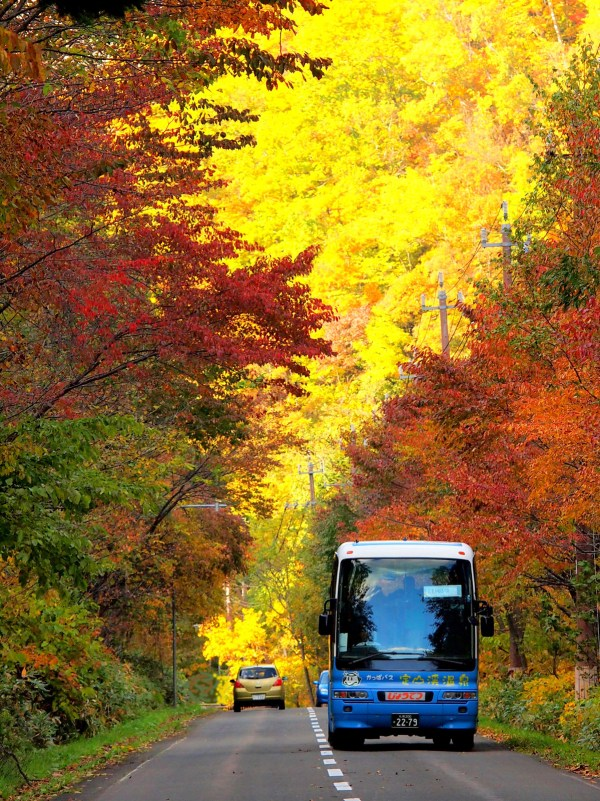 Sapporo during Autumn