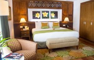 1 Bedroom Suite at Cocoon Boutique Hotel