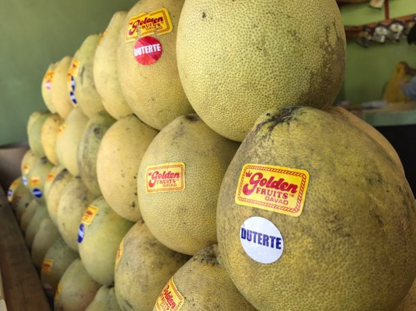 Golden Pomelo of Davao City