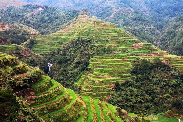 Rice Terraces in Banaue Ifugao