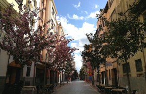Streets of Logrono