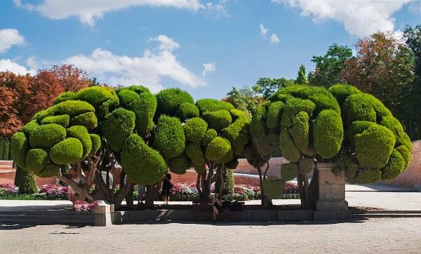 Sculpted trees in Retiro Park.
