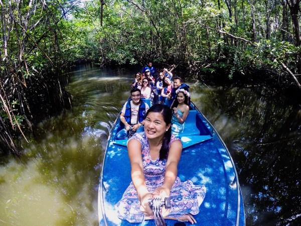Mangroves Tour in Bintan