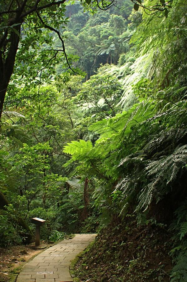 Elephant Mountain via Wikipedia