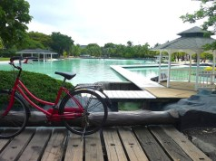 Ride bikes around Plantation Bay
