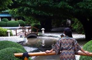 Sprawling Zen-like Greenery at Mogambo Springs