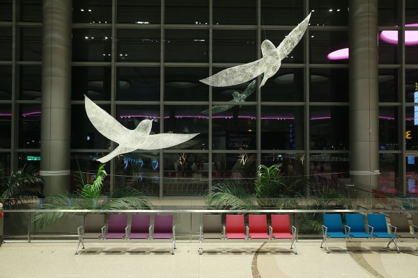 The Birds at Changi Airport T4