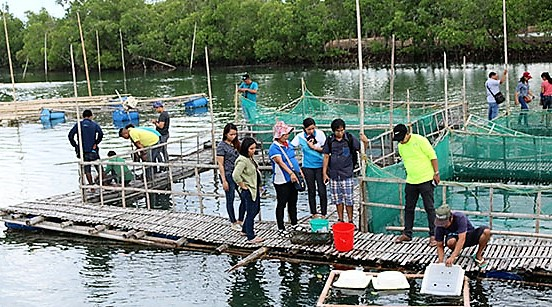 SEAFDEC in Tigbauan