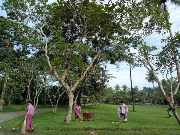 TYPICAL PLANTATION DAY. People keeping the place clean and in order is a 24-hours work for these well-trained staff. In this photo, I think, Oppo F3 agreed with me without adjustments.