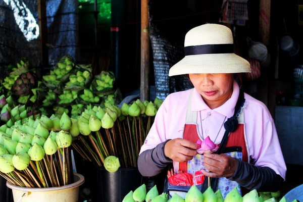 Lotus Flower Vendor - Chiang Mai Travel Guide
