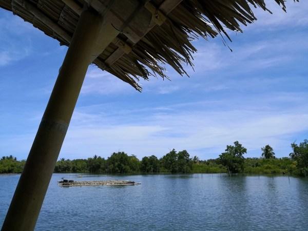 Palina Greenbelt Ecopark River Cruise