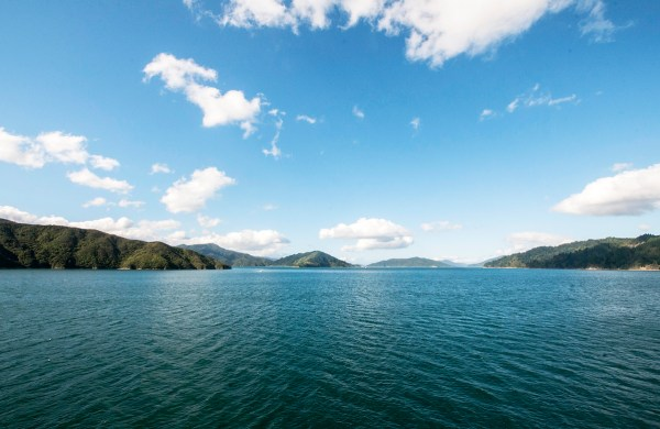 Entering Queen Charlotte Sound. A Ferry Passage Through Cook Strait