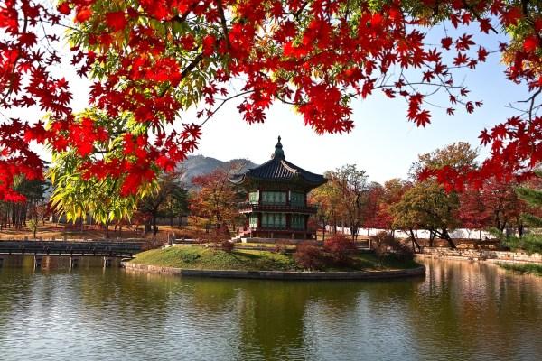 Best Hotels in Seoul Korea