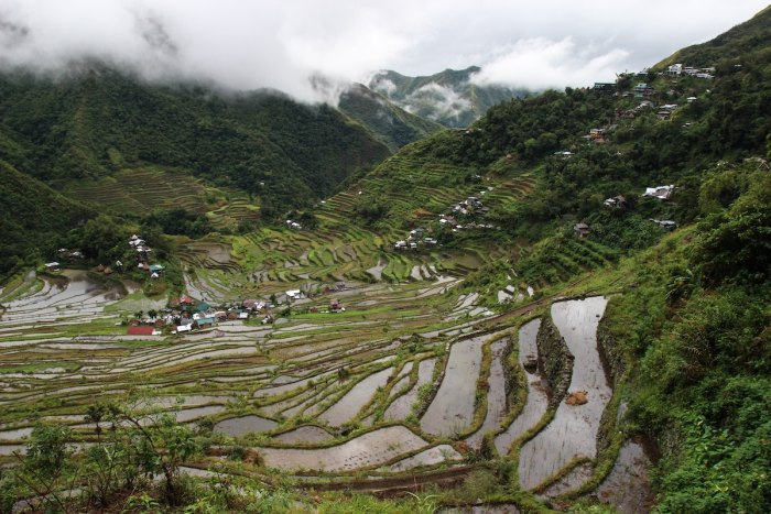 Rice Terraces in Sagada photo by @herrherrmann via Unsplash