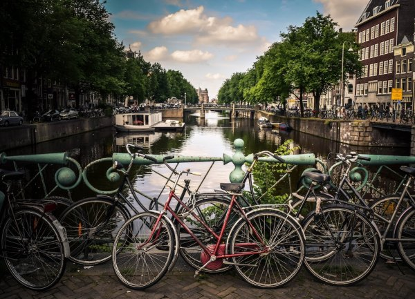Bikes in Amsterdam by Jace Grandinetti via Unsplash