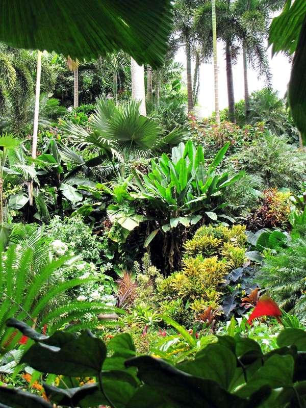 Hunte's Garden by Alex Dizon via Wikipedia CC