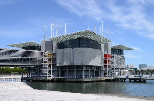 Lisbon Oceanarium photo by Alvesgaspar via Wikipedia CC