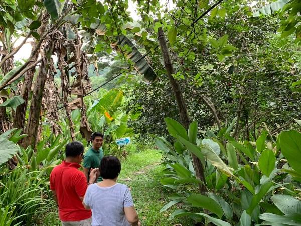 Organic Farm Tour