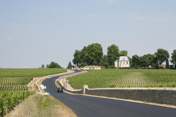 Winery in Bordeaux France