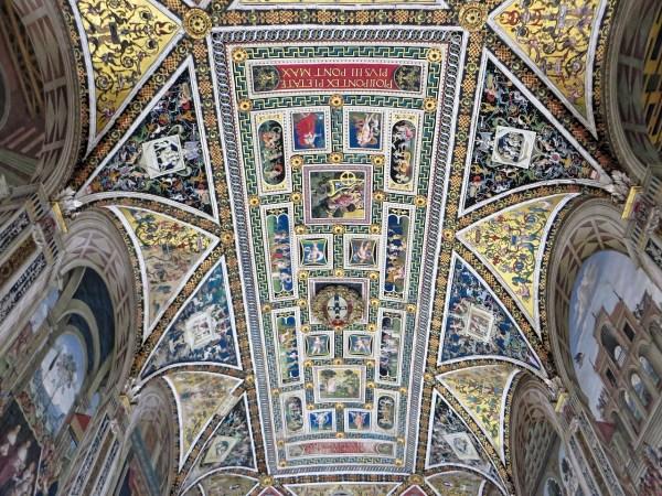 Inside Piccolomini Library
