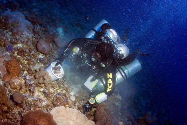 A technical diver collects sediment samples for fauna and flora analyses.© OCEANA/UPLB