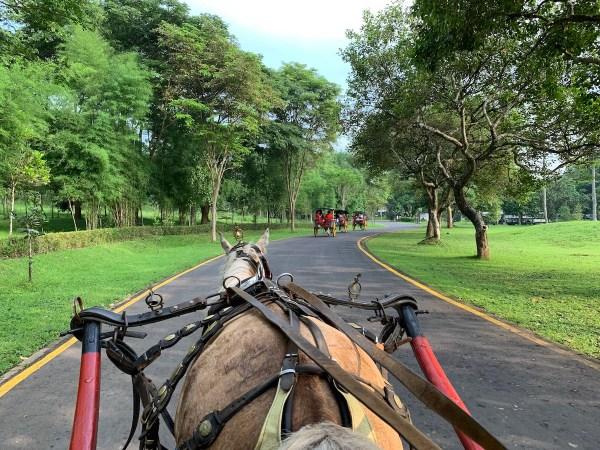 Andog Village Tour from Borobudur Temple