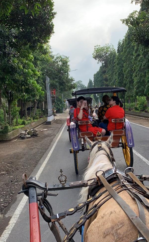 Andog Village Tour from Borobudur