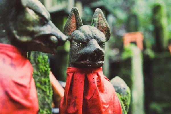 Foxes of Fushimi Inari Taisha by Ralph Spandl via nsplash