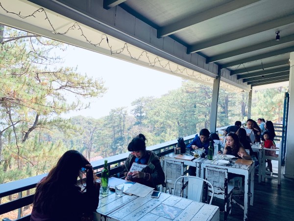 Lemons and Olives in Baguio City