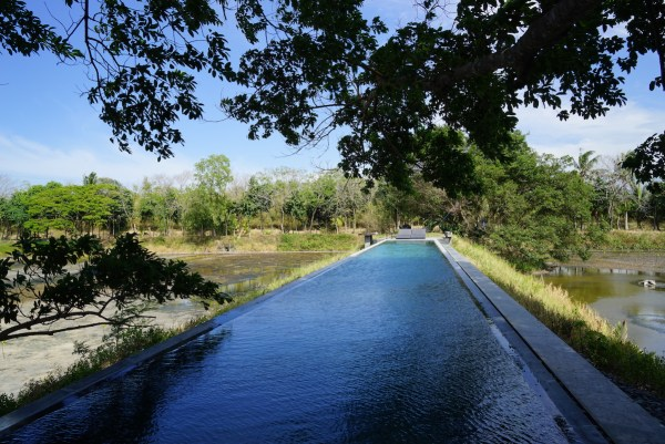 Elevated Pool at Punong Garys Place