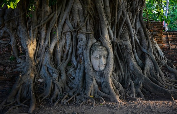 Historic City of Ayutthaya Travel Guide