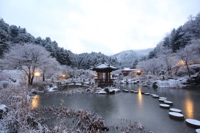 The Garden of Morning Calm photo via VisitKorea