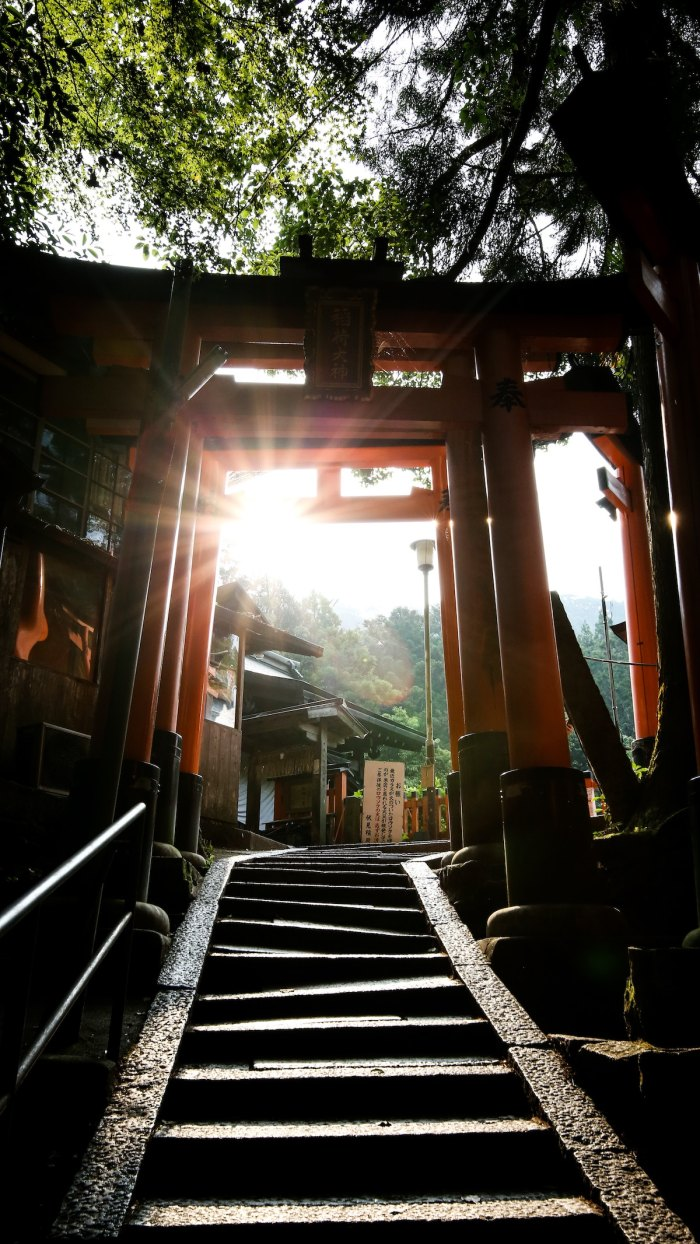Day Trip in Kyoto by @chantallim via unsplash