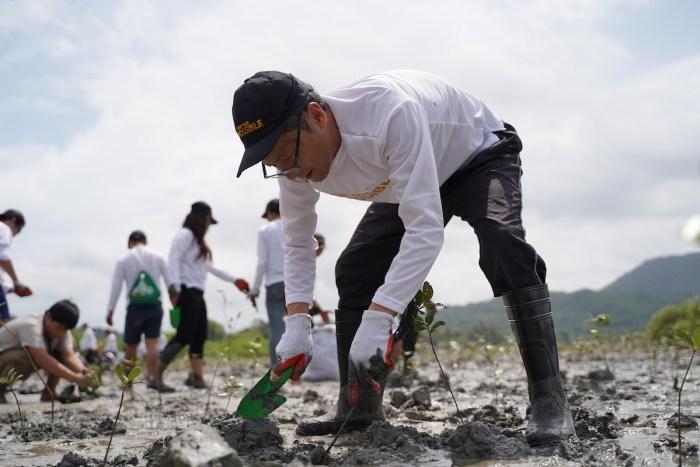 Toyota Motor Philippines Mangrove Planting