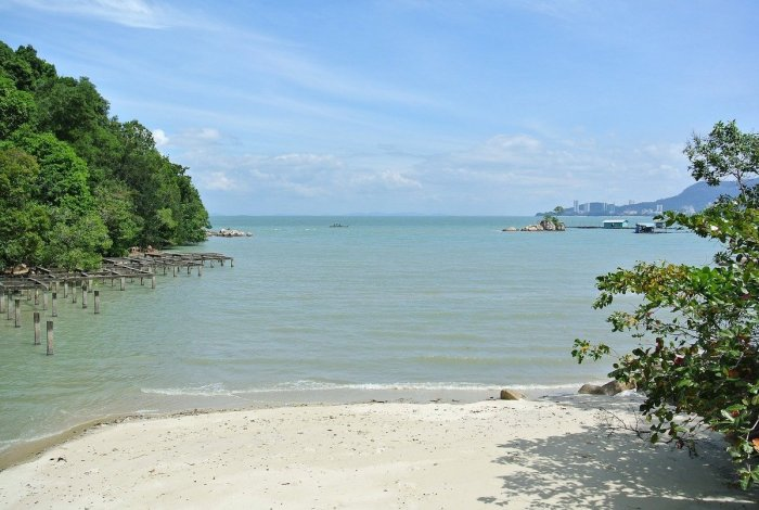 Penang National Park
