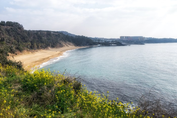 Jungmun Saekdal beach view a famous beach in Jungmun tourism complex in Seogwipo, Jeju Island, South Korea via Depositphotos