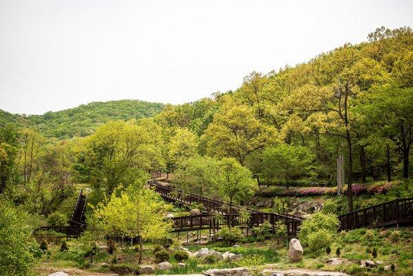 Seokmodo Arboretum