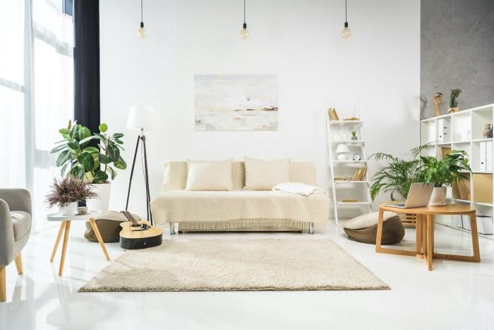 Best Indoor Plants photo via Depositphotos