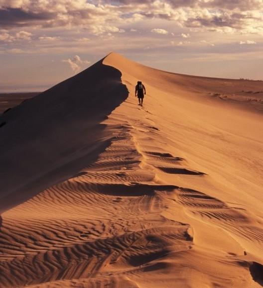 Athabasca Sand Dunes Provincial Park photo via tourismsaskatchewan.com