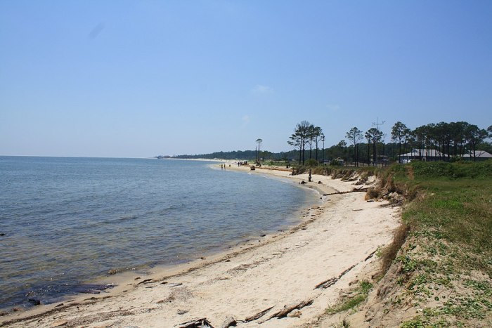 View of the southeastern shore of the Dauphin island by Jeffrey Reed via Wikipedia CC